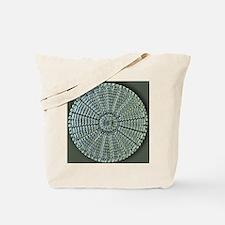 Diatom, light micrograph Tote Bag