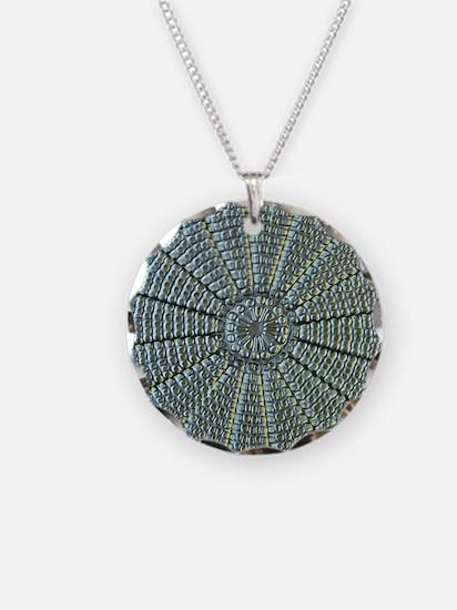 Diatom, light micrograph Necklace