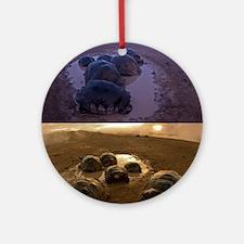 Galapagos giant tortoise thermoregu Round Ornament