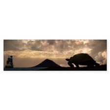 Galapagos giant tortoise and sail Bumper Sticker
