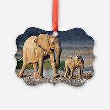 Desert-adapted elephants Ornament