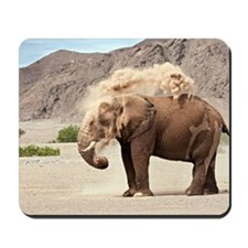 Desert-adapted elephant Mousepad