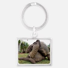 Galapagos giant tortoises matin Landscape Keychain
