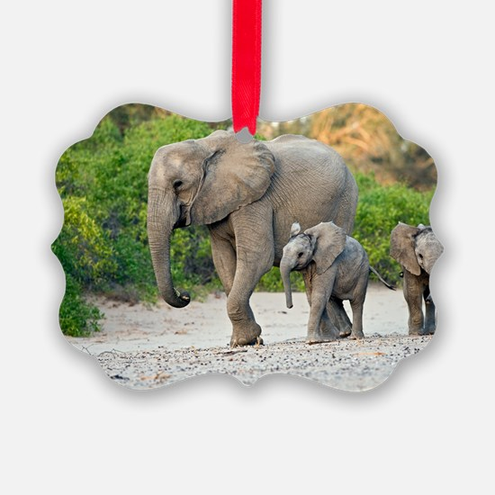 Desert-adapted elephants Ornament