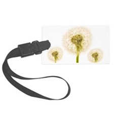 Dandelion seed heads Luggage Tag