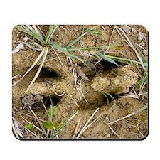Footprints of an Elk Mousepad