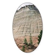 Cross-bedded sandstone layers Decal