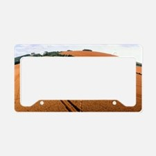 Crop formation, Cheesefoot, H License Plate Holder