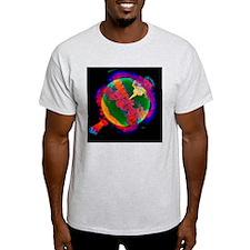 Exploding white dwarf, 3D simulation T-Shirt