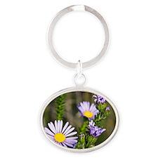 Felicia (Felicia echinata) flowers Oval Keychain