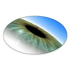 Eye, computer artwork Decal