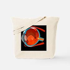 Eye anatomy Tote Bag