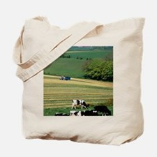 Cows grazing in a field with haymaking in Tote Bag
