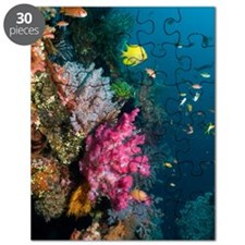 Coral reef, Indonesia Puzzle