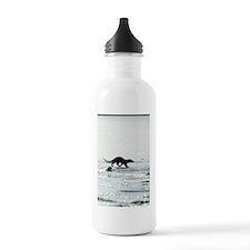 European otter on sea  Water Bottle