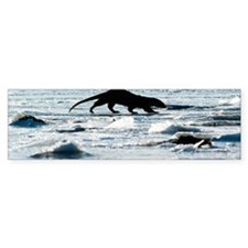 European otter on sea ice Bumper Sticker