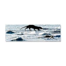 European otter on sea ice Car Magnet 10 x 3