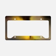 Computer illustration of a to License Plate Holder