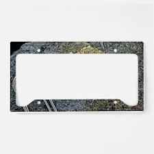 Electrum alloy deposit License Plate Holder
