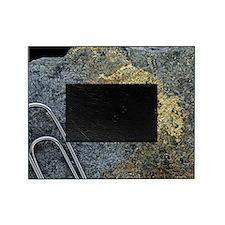 Electrum alloy deposit Picture Frame