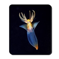 Common clione Mousepad