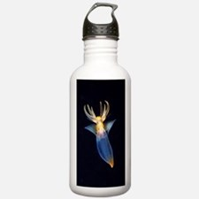 Common clione Water Bottle