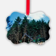 Commercial forestry Ornament