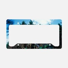 Commercial forestry License Plate Holder