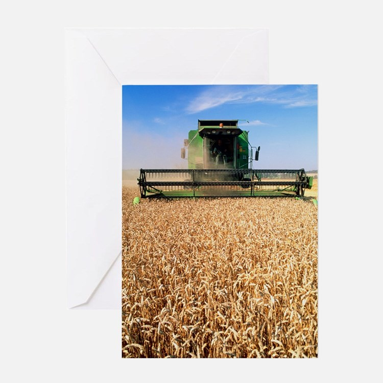 Combine harvester working in a wheat Greeting Card