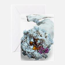Ebola virus, molecular model Greeting Card