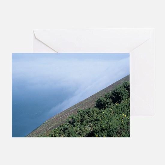 Coastal mist Greeting Card