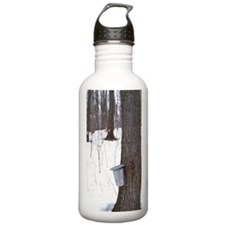 Collecting maple tree  Water Bottle