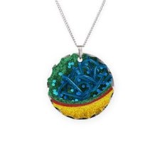 E. coli bacterium, artwork Necklace