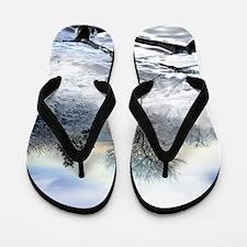 Climate change Flip Flops