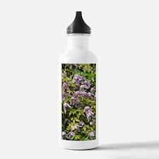 Clematis alpina Water Bottle
