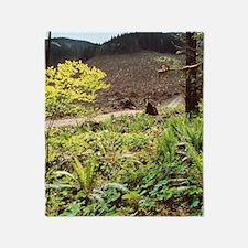 Clear-cut forestry Throw Blanket