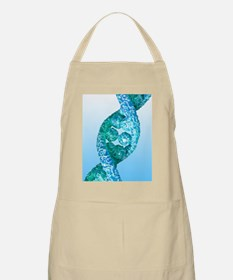 DNA molecule, artwork Apron