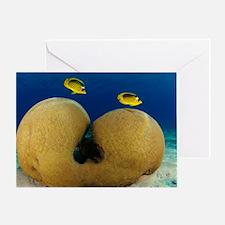 Diagonal Butterflyfish Greeting Card