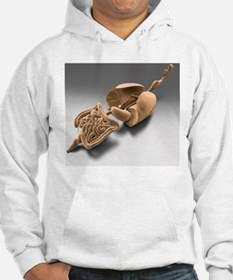 Digestive and respiratory tract, Hoodie