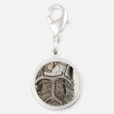 Circle of Willis nerves, 1844  Silver Round Charm