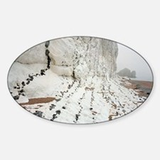 Chalk cliffs Sticker (Oval)