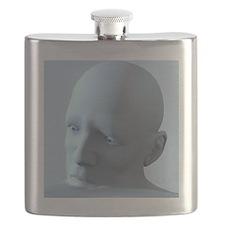 Depression, conceptual image Flask