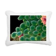 Candida albicans yeast c Rectangular Canvas Pillow