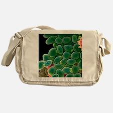 Candida albicans yeast cells, SEM Messenger Bag