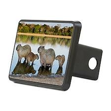 Capybara family Hitch Cover