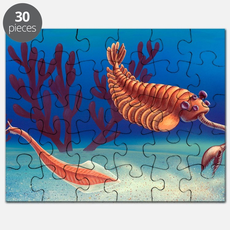 Cambrian animals, artwork Puzzle