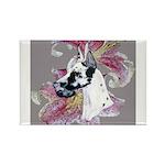 Feminine Harlequin Great Dane Rectangle Magnet (10