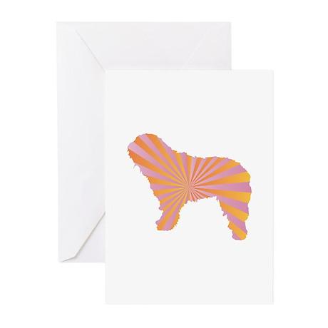 Bergamasco Rays Greeting Cards (Pk of 10)