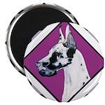 Harlequin Great Dane design Magnet