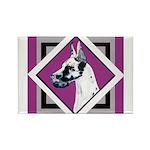 Harlequin Great Dane design Rectangle Magnet